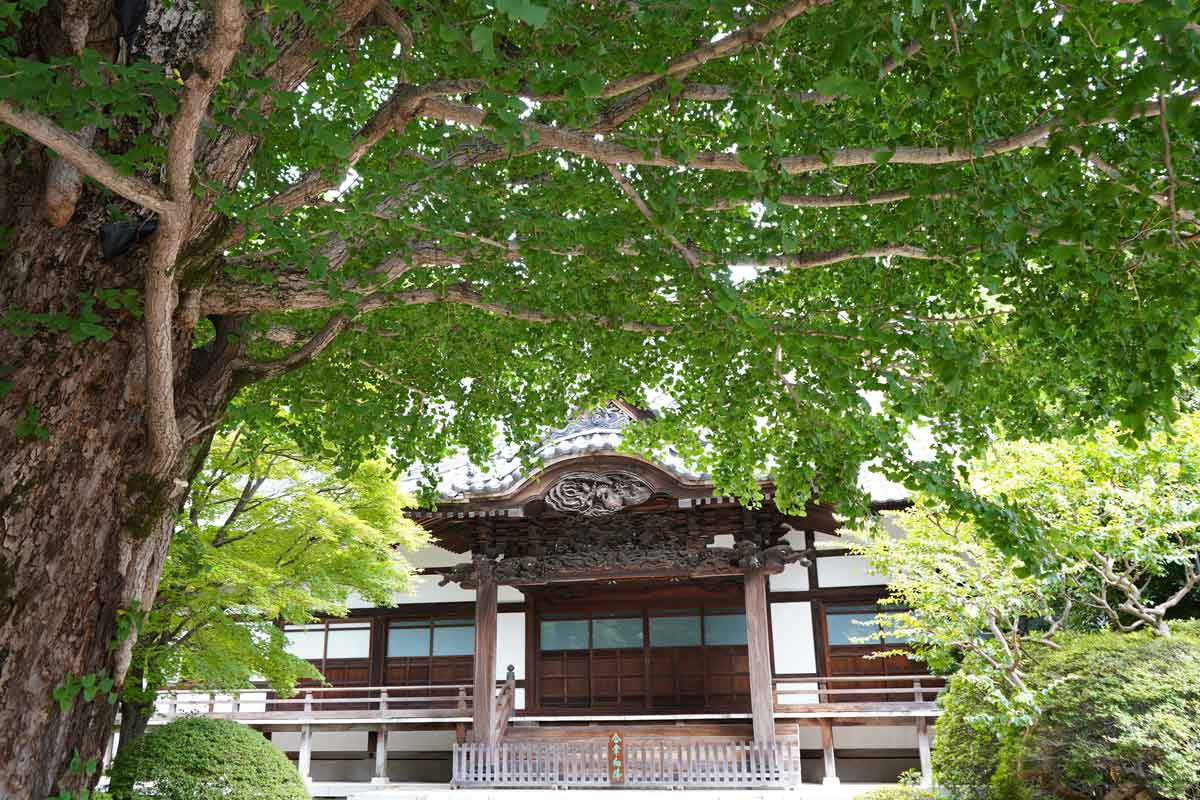 宿鳳山高円寺本堂前